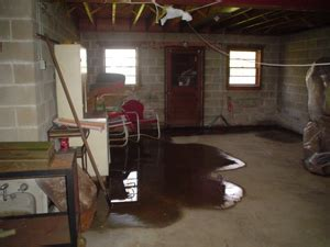 Water in Basement: What to Do When Your Basement Leaks