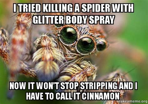 Killing Spiders Meme - i tried killing a spider with glitter body spray now it