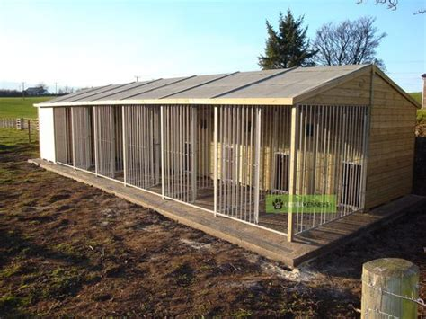 industrial puppy commercial kennel plans search kennels d dogs and
