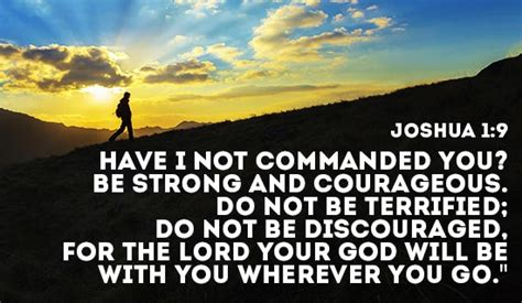 which will you be do s and don ts for living your thirdthird on purpose books free don t be discouraged god s got your back ecard