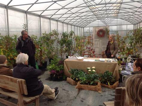 costo orario giardiniere i giardini e le fronde vivaio serravalle scrivia al