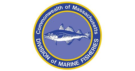 part time plymouth ma ma dmf hiring recreational fisheries surveyors on the water