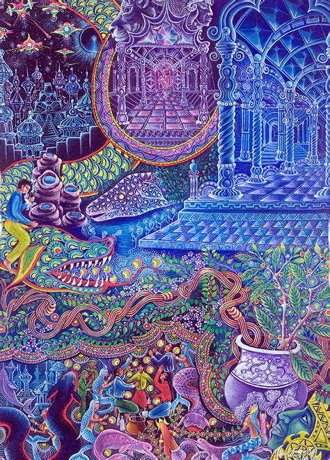 the psychedelic leap ayahuasca psilocybin and other visionary plants along the spiritual path books pablo amaringo artist website
