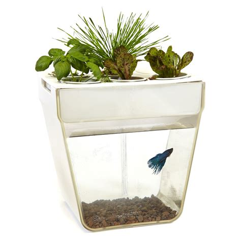 Planter Fish Tank by Aquafarm Aquaponic Garden And Self Cleaning Aquarium