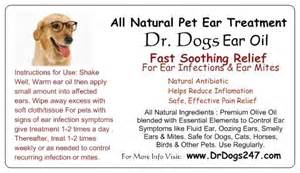 home remedies for ear mites in dogs eartreatment4animals severe ear mites in dogs