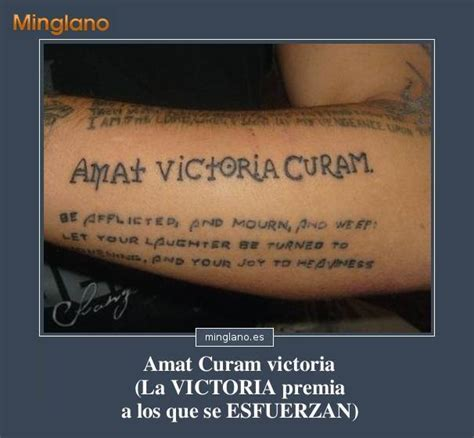 frases para tattoo en latin frases cortas para tatuajes en lat 205 n