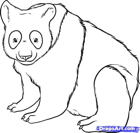 Panda Outline Drawing by Panda Outline Cliparts Co