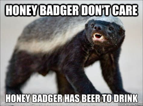 Honey Badger Don T Care Meme - honey badger dont care honey badger has beer to drink honey badger dont care