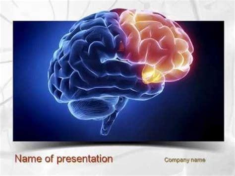 powerpoint templates neuroscience powerpoint templates neuroscience image collections