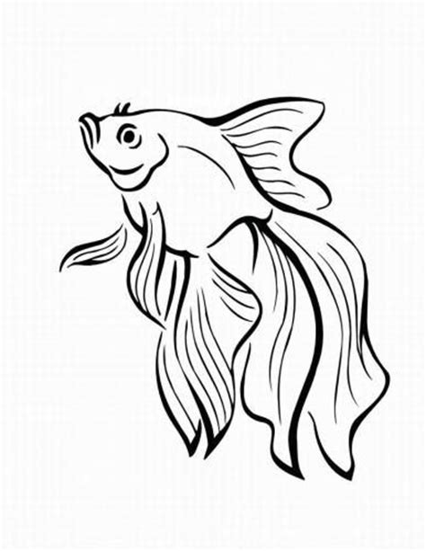 printable coloring pages for adults fish fish coloring pages for adult coloring pinterest