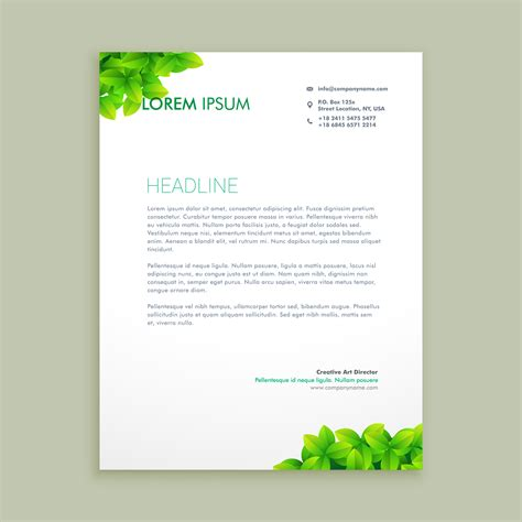 eco green leaf letterhead template vector design