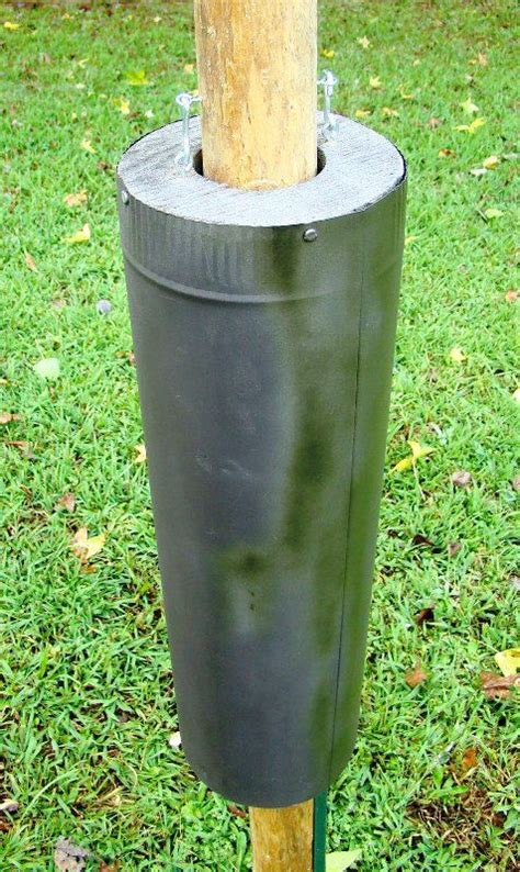 bird feeder poles ideas  pinterest