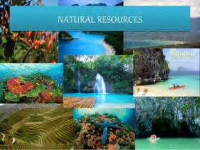 Geography and natural resources of the philippines 1 natural resources