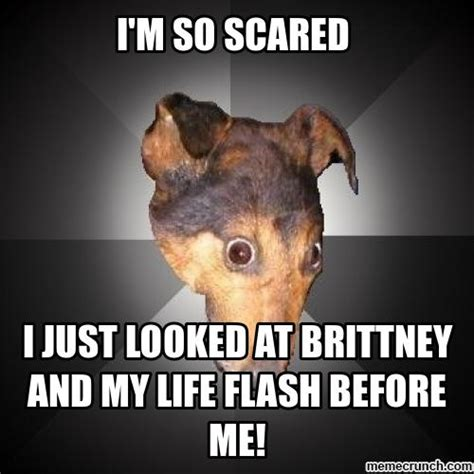 Scared Memes - ohh i m so scared meme pictures to pin on pinterest