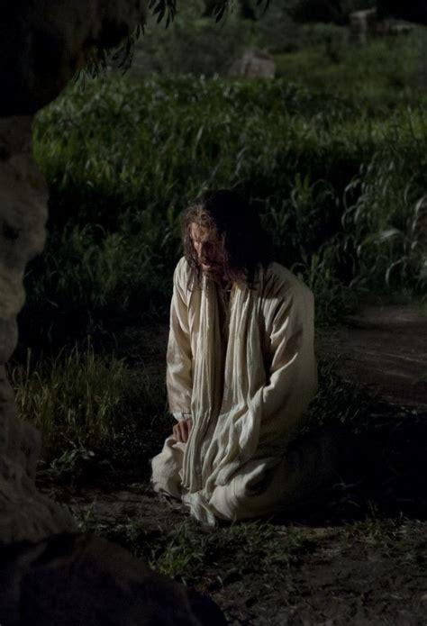jesus christ praying   garden  gethsemane