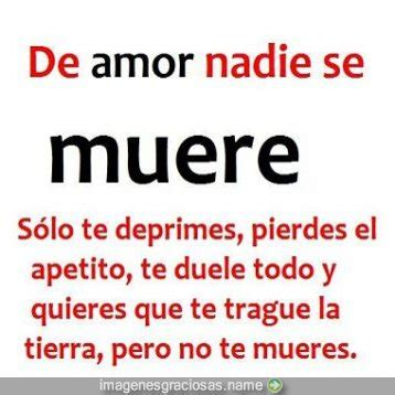 imagenes chistosas y frases frases chistosas del amor imagenes chistosas imagenes