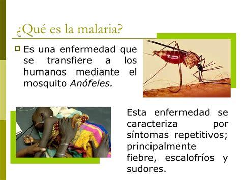 L Malaria by Niveles De Prevencion De La Malaria Yukiko Malaria