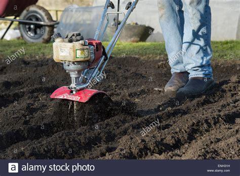 preparing soil for vegetable garden talentneeds
