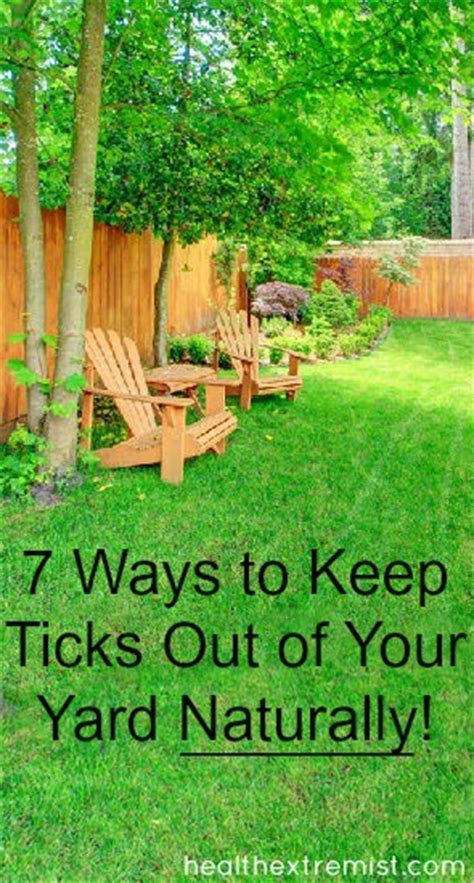 get rid ticks backyard 7 ways to keep ticks out of your yard naturally health