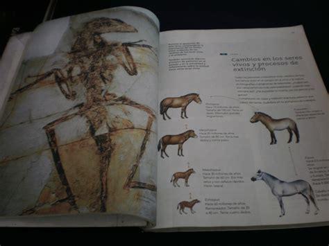 solucionario del libro sep quinto grado ciencias naturales solucionario del libro sep quinto grado ciencias naturales