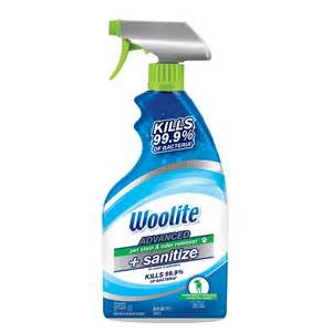 Woolite Carpet And Upholstery Cleaner Shop Woolite Advanced Pet Stain Odor Remover Sanitize