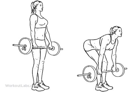 How To Make Bar Top Barbell Deadlift Illustrated Exercise Guide Workoutlabs