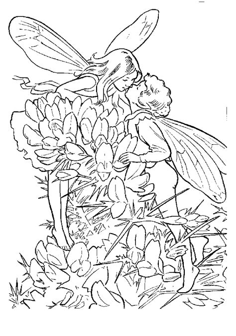 world of fairies coloring book books coloring the world one page at a time free coloring