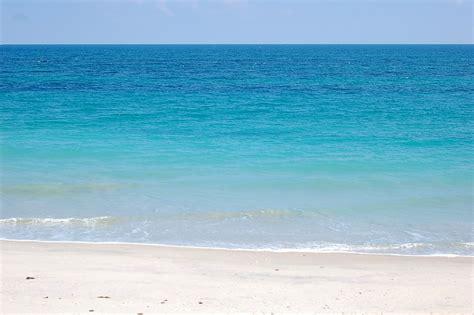 florida beaches florida wallpup