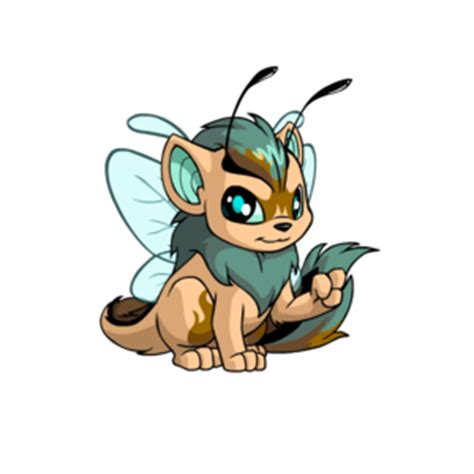 faerie paint brush neopets guild fandom powered by wikia