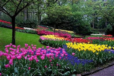 Rahasia Taman Bunga Serial Cantik kumpulan foto taman bunga terindah di dunia kerikils
