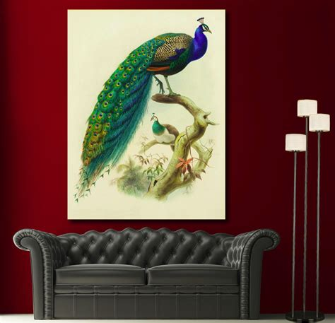 canvas giclee prints wall peacock feather colorful