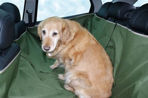 si鑒e auto pour chien bache de protection poils de chien dans voiture banquette ar