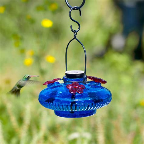 parasol gardens blue bloom glass hummingbird feeder