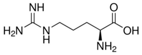L-Arginine reagent grade, ≥98% | Sigma-Aldrich L Arginine Structure