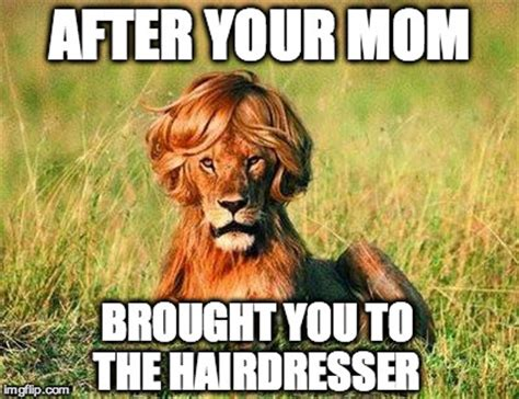 Hairdresser Meme - come on baby don t be like that i brought you some toast