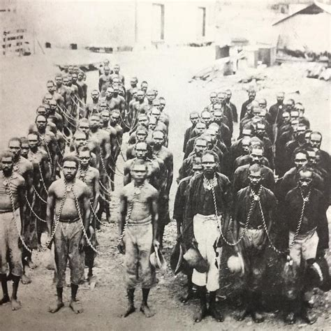 slavery existed in australia australia was built on