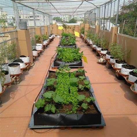 homecrop kitchen garden kits garden maintenance services