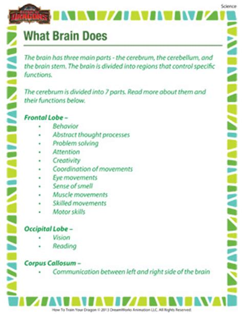 Science Worksheets For 5th Grade by What Brain Does Printable 5th Grade Science Worksheet