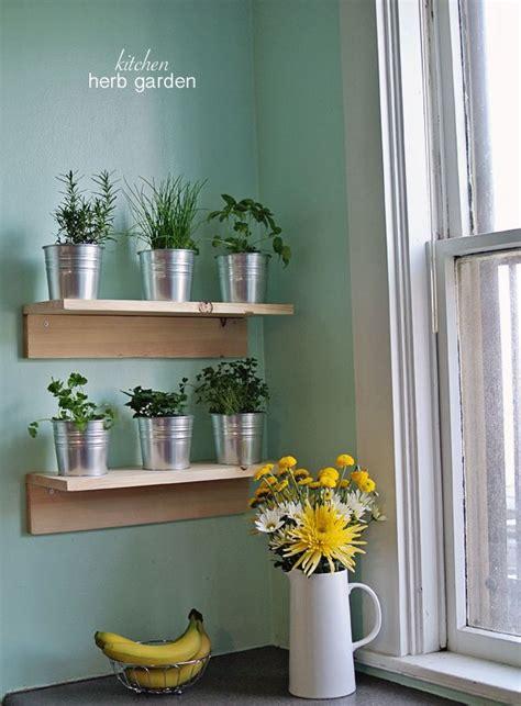 Best 25 Kitchen Herbs Ideas On Pinterest Indoor Herbs Kitchen Wall Herb Garden