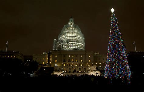 photos biggest christmas tree lighting ceremonies around