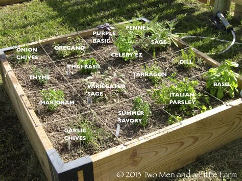 herb garden layout ideas two men and a little farm raised beds let the gardening begin