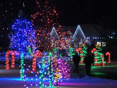 Pin By Kathie N On Detroit Metro Burbs Pinterest Lights At The Detroit Zoo