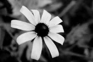 Black And White Image CnMuqi