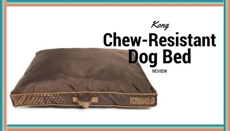 Chew Resistant Beds by Kong Chew Resistant Heavy Duty Pillow Bed Review Mhl