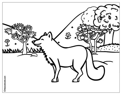 Animal Planet Coloring Pages forest coloring page animal planet