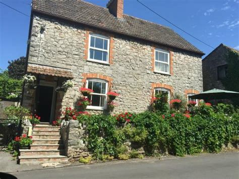 Cottages In Cheddar by Welcoming Impression Picture Of Chedwell Cottage