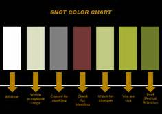 color of boogers snot colour chart this is scientific rn