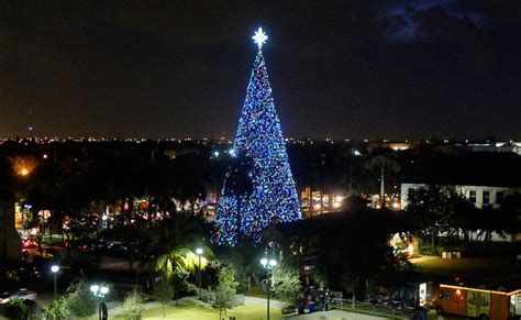 delray beach 100ft christmas tree events livingfla