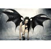 Wings Succubus Gothic Black Hair High Quality WallpapersHigh