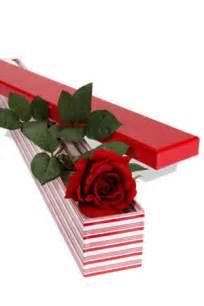 Same Day Delivery Gift Baskets Long Stem Single Rose Presentation Box Localfloristdelivery Org